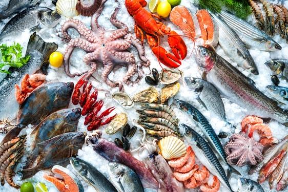 Οι θησαυροί της θάλλασας: Πως επιλέγουμε φρέσκα θαλασσινά!