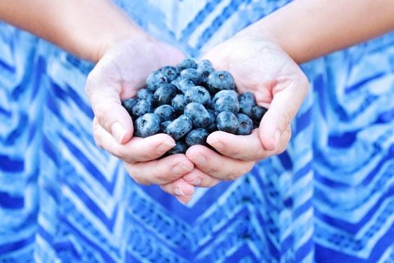 Τροφή για σκέψη: τα super foods που τονώνουν και προστατεύουν την πνευματική μας λειτουργία